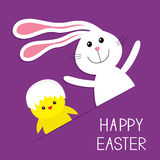 Happy Easter. Bunny rabbit hare and chicken in the paper pocket. Baby greeting card. Violet background. Flat design. Stock Photo