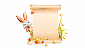 Happy Easter Bunny saying hello with sign stock video footage