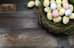 Happy Easter candy easter eggs in birds nest with copy space Royalty Free Stock Photo