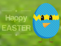 Happy Easter card with chicken in broken egg Royalty Free Stock Image