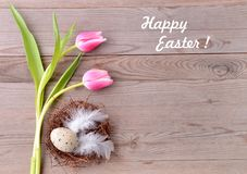 Happy easter card. Flowers and easter nest. Stock Image