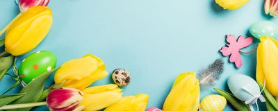 Happy Easter card. Frame with yellow tulips and easter quail eggs with copy space for text on blue background. Top view. Banner royalty free stock images