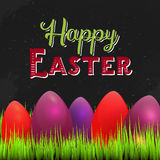 Happy Easter Card with space for text, Grass on dark chalkboard with coolorful eggs. Vector illustration with wintage Stock Photography