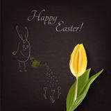 Happy Easter card with tulip and rabbit. Cartoon white rabbits on dark paper. Rabbit with tulip. Easter Holiday. Easter Vector. Easter greeting card. Happy Stock Images