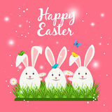 Happy easter card with white rabbits. Happy easter card template with cute white rabbits or bunny eggs shaped and spring flowers. Vector illustration Royalty Free Stock Photography
