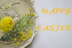 Happy easter card,. Wicker basket with quail eggs,shavings, chicken,willow twig and bird on the white background. happy easter card Royalty Free Stock Images