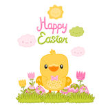 Happy Easter cartoon cute chicken and eggs Royalty Free Stock Image