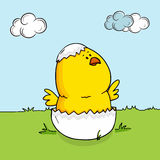 Happy Easter celebration with cute chick. Cute chick coming out from cracked egg on nature background for Happy Easter celebration Royalty Free Stock Photo