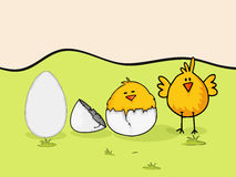 Happy Easter celebration with cute chicks. Stock Photography