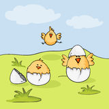Happy Easter celebration with cute chicks. Happy Easter celebration with cute chicks and cracked egg on nature background Royalty Free Stock Photos
