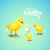Happy Easter celebration with cute chicks. Happy Easter celebration greeting card with cute chicks and eggs on shiny sky blue background Stock Image