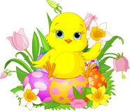 Happy Easter chick. Illustration of newborn chick sitting on Easter eggs vector illustration