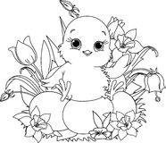 Happy Easter chick. Coloring page. Newborn chick sitting on Easter eggs . Coloring page Royalty Free Stock Photos