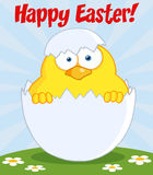 Happy easter chick in a shell on a hill Stock Photos