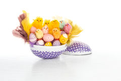 Happy Easter chicken family in an big Easter egg with small colorful Easter eggs and feathers. Stock Image