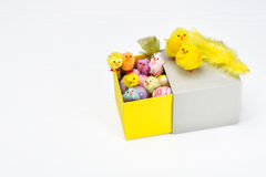 Happy Easter chicken family in an open box with colorful Easter eggs Royalty Free Stock Images