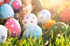 Happy easter! Closeup Colorful Easter eggs in nest on green grass field during sunset background royalty free stock photos