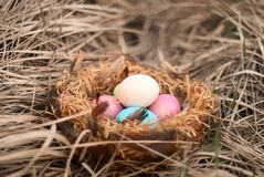 Happy Easter. Colorful Easters eggs in a nest with feathers. Happy Easter. Colorful Easters eggs in a nest with feathers royalty free stock photos