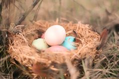 Happy Easter. Colorful Easters eggs in a nest with feathers. Happy Easter. Colorful Easters eggs in a nest with feathers royalty free stock photo