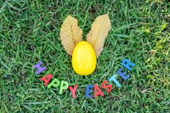 Happy Easter with Colorful Eggs cute bunny in the morning, Funny decoration in grass spring season stock images