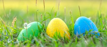 Happy Easter with Colorful Eggs cute bunny in the morning, Funny decoration in grass spring season stock photos