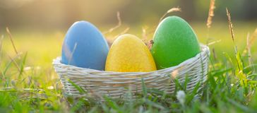 Happy Easter with Colorful Eggs cute bunny in the morning, Funny decoration in grass spring season stock photography