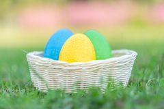 Happy Easter with Colorful Eggs cute bunny in the morning, Funny decoration in grass spring season. Happy Easter with Colorful Eggs cute bunny in the morning stock image