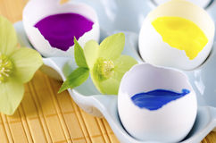 Happy Easter colorful eggs shells and hellebore flowers. On a ceramic tray Stock Photo