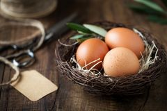 Easter concept - eggs in a nest royalty free stock photo