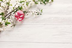 happy Easter concept. stylish painted egg on rustic wooden background with spring flowers and willow branches. seasons greeting c stock images