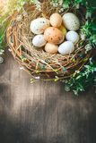 Happy Easter. Congratulatory easter background. Easter eggs and flowers. royalty free stock image