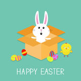 Happy Easter. Cute bunny rabbit, chicken and eggs. Paper cardboard package gift box. Flat design. Stock Images