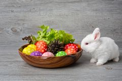 Happy Easter Day. Rabbit with colorful Easter eggs in a wooden tray decorated with vegetables. Cute Easter bunny with painted stock photos