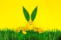 Happy Easter Day & spring is coming concept Royalty Free Stock Photography