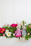 Happy easter decoration with a bunny couple an pink primula on w Stock Image