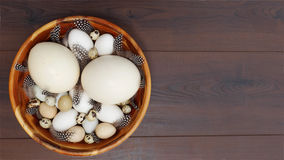 Happy Easter!. Different blown eggs arranged in a wooden bowl and decorated with feathers Stock Image