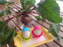 Happy Easter easy creations garden eggs vegetable wishes table fun Royalty Free Stock Photos