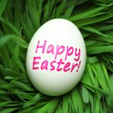 Happy Easter egg hidden in grass Royalty Free Stock Image