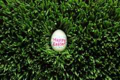 Happy Easter egg hidden in grass Royalty Free Stock Images