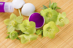 Happy Easter with egg shells and magenta paint on a yellow pad and hellebore. And tube royalty free stock photo