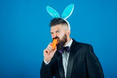 Happy easter egg. Smile easter man. Man in suit with bunny rabbit ears. Easter bunny dress. Happy easter egg. Smile easter man. Man in suit with bunny rabbit royalty free stock photography
