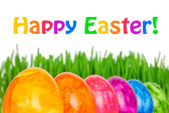 Happy Easter eggs grass colorful Royalty Free Stock Images