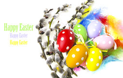 Easter eggs and spring branch royalty free stock image