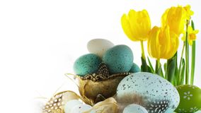 Happy Easter; Easter eggs and spring flowers stock video footage