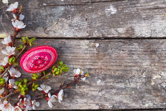 Happy easter with eggs and spring flowers. On wooden background royalty free stock photo