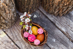 Happy easter with eggs and spring flowers. On wooden background Stock Image