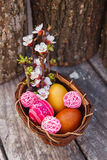 Happy easter with eggs and spring flowers. On wooden background Stock Photography