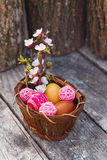 Happy easter with eggs and spring flowers. On wooden background Stock Images