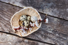 Happy easter with flowers and quail eggs. Happy easter with spring flowers and quail eggs on basket Stock Photo