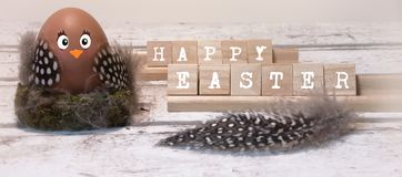 Happy easter, funny easter chick stock photography